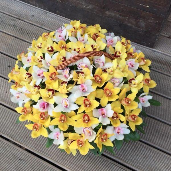 Корзина с желтыми и белыми орхидеями
